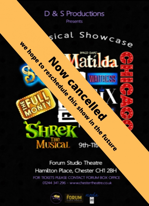 A Musical Showcase
