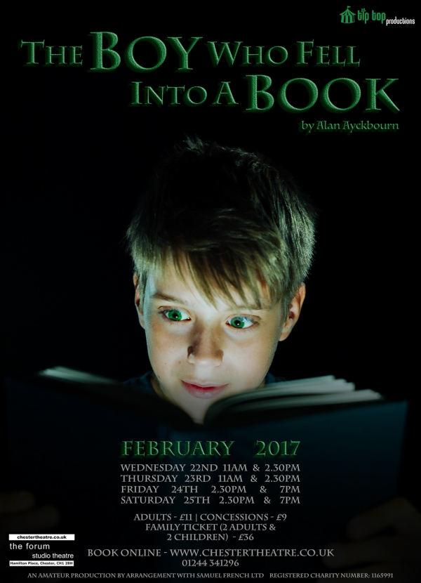 The Boy Who Fell Into A Book