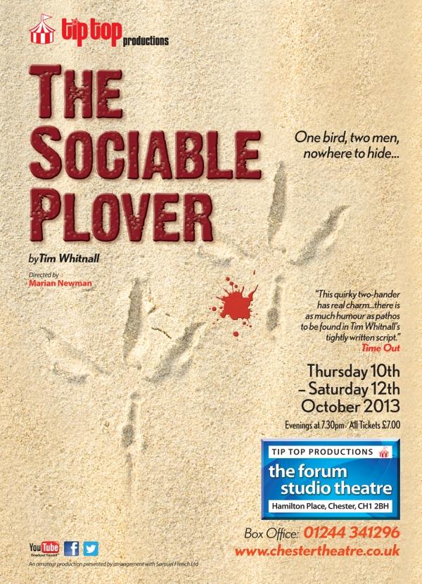 The Sociable Plover
